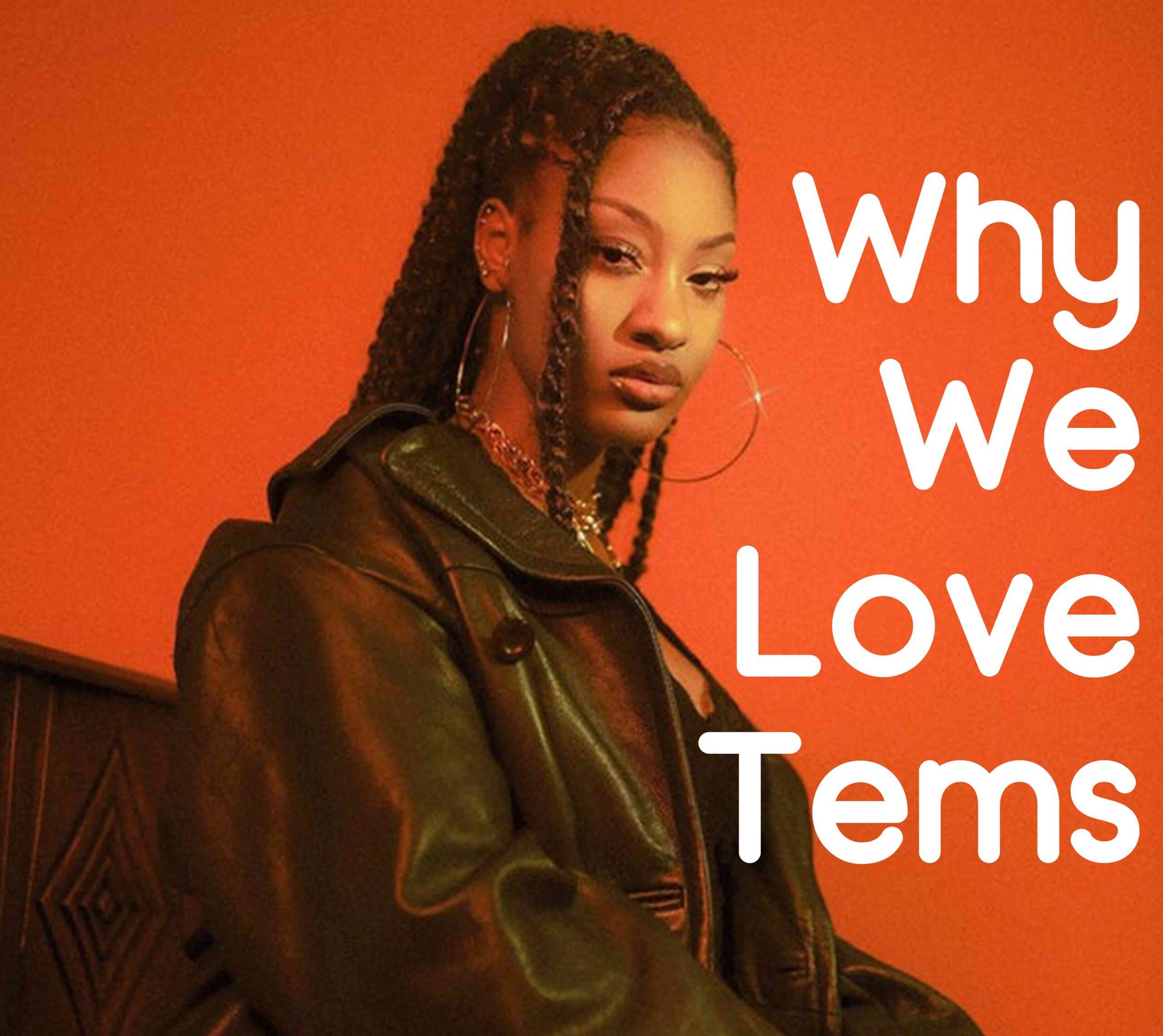 Why We Love Tems